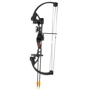 MOX1000443 300x300 - Bear Archery Brave Black RH Bow Set AYS300BR