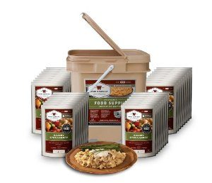 MOX2068545 300x258 - Wise Foods Entree only Grab and Go Bucket 120 Servings