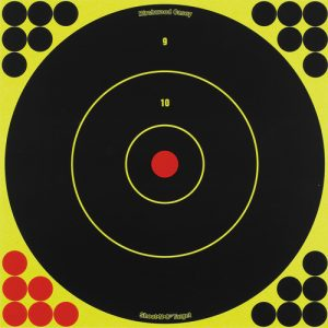 MOX734022 300x300 - Birchwood Casey Shoot-N-C 12in Bulls-Eye Target - 12 Targets