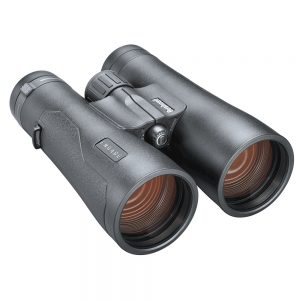 CW77006 300x300 - Bushnell 10x50mm Engage Binocular - Black Roof Prism ED-FMC-UWB