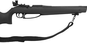 ZA753S 300x150 - Daisy Avanti 753s Match Grade - Air Rifle .177 Pellet